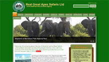 Real Great Apes Safaris Ltd.